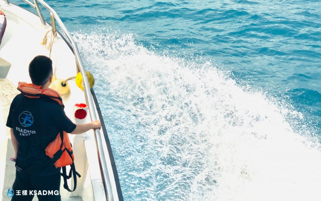 【賞鯨船】生態教育與美景兼具,花蓮賞鯨豚第一首選