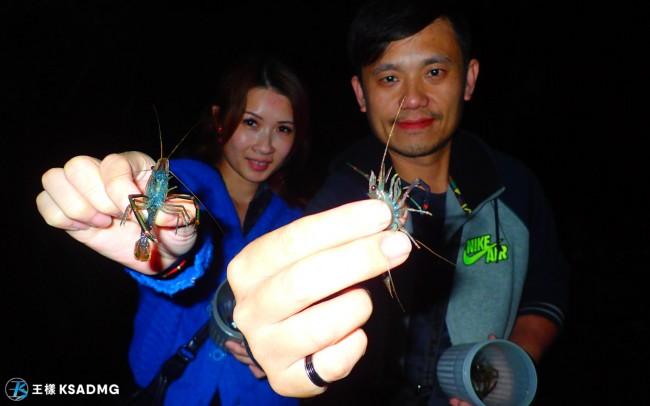 【夜間抓蝦】花蓮星光抓蝦趣,海陸大餐送給你