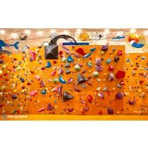 【攀岩】花蓮攀岩健身體驗,挑戰你的青春熱血