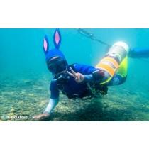 【潛水】獨特船隻潛水體驗,深度探索北海岸之美