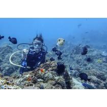 【潛水】海底總動員!墾丁後壁湖輕鬆岸潛