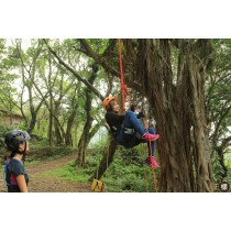 【攀樹】樹梢上的天空.冠軍團隊攀樹體驗半日